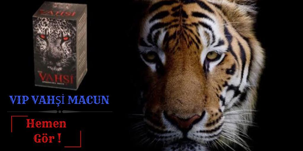 Vahşi Macun